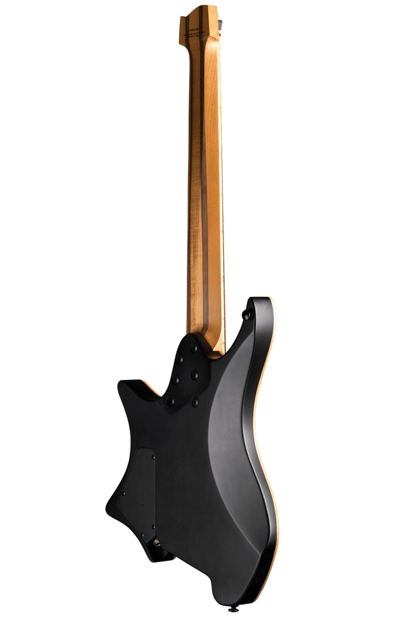 Boden standard 8 string maple flame black back view