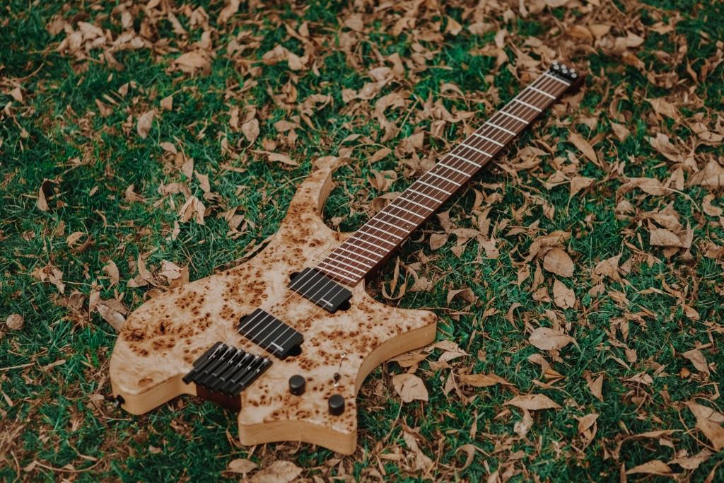 Usa Select Strandberg Guitars
